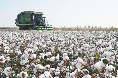 surge of textile raw materials 1