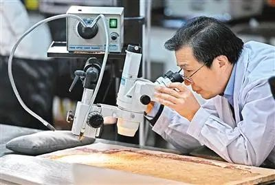 textile fabrics 1